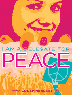 Codepink_delegatepeace_small